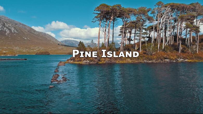 pine-island-thumbnail